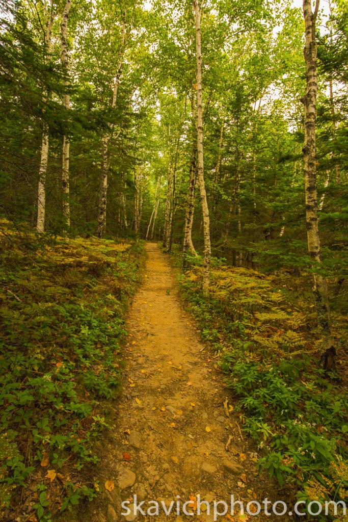 landscape photography Acadia national park Maine